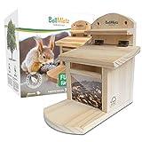 BellMietz® geliebtes Eichhörnchen Futterhaus [extra sicher & stabil]   Eichhörnchenhaus...