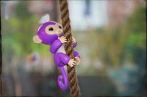 Fingerlings klettert am Seil