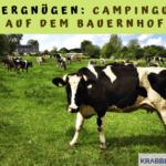 Landvergnügen: Campingurlaub auf dem Bauernhof