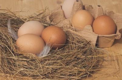 Eier aus dem eigenen Garten